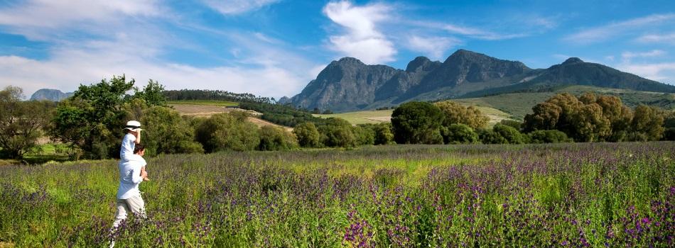 Babylonstoren Paarl South Africa