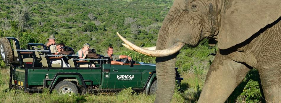 Kareiga Private Game Reserve South Africa