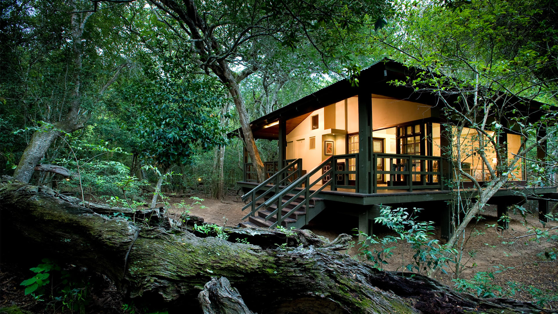 phinda-forest-lodge-room21
